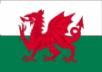 Бельгия - Уэльс 1:1 видеообзор